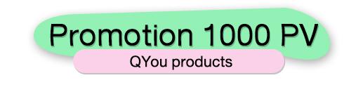 PROMOTION 1000 PV