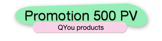 PROMOTION 500 PV